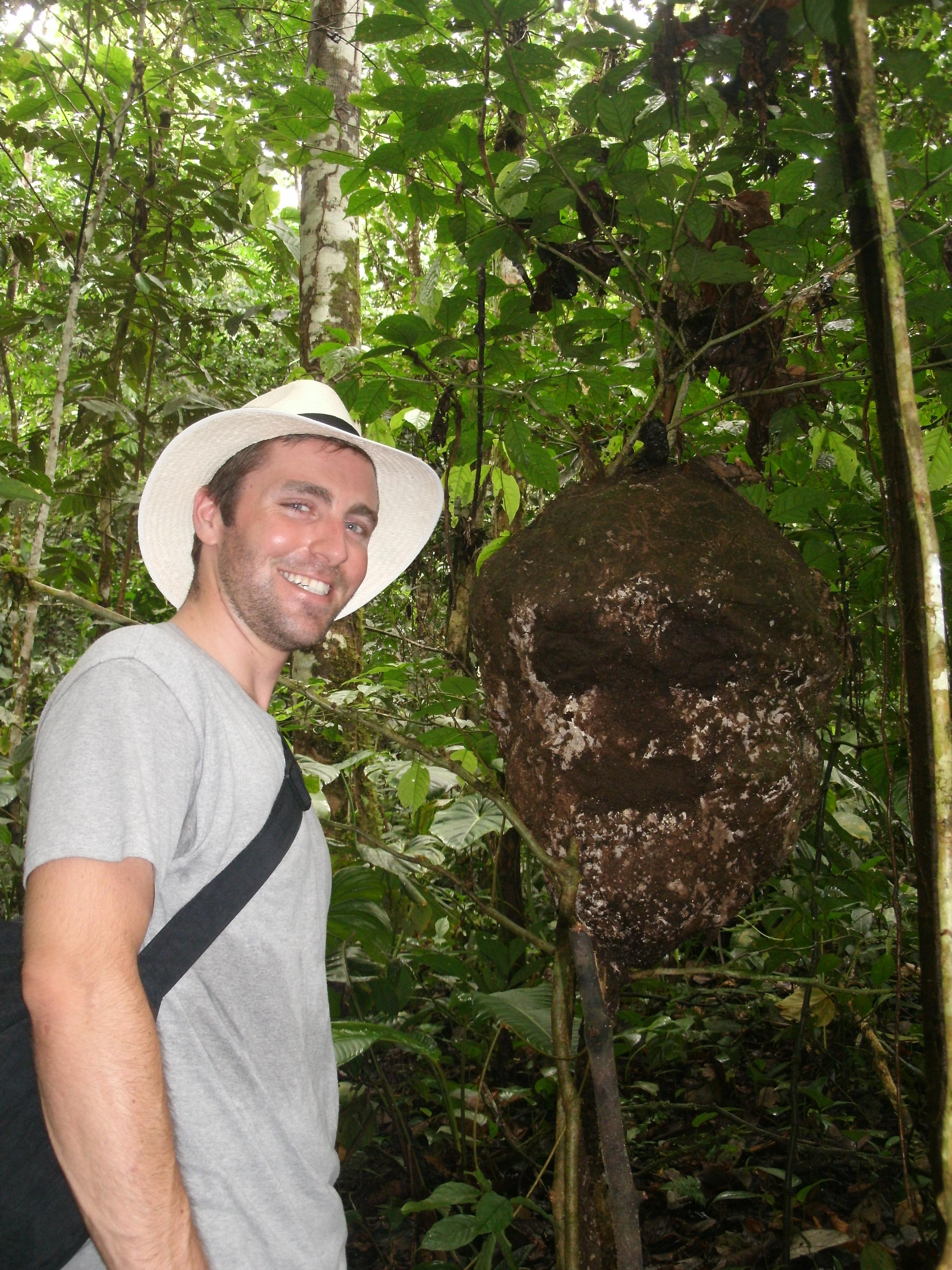 Man Next to Large Termite Nest Amazon Rainforest