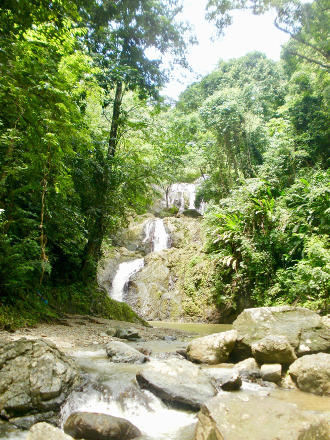 Argyle Falls Waterfall in Tobago