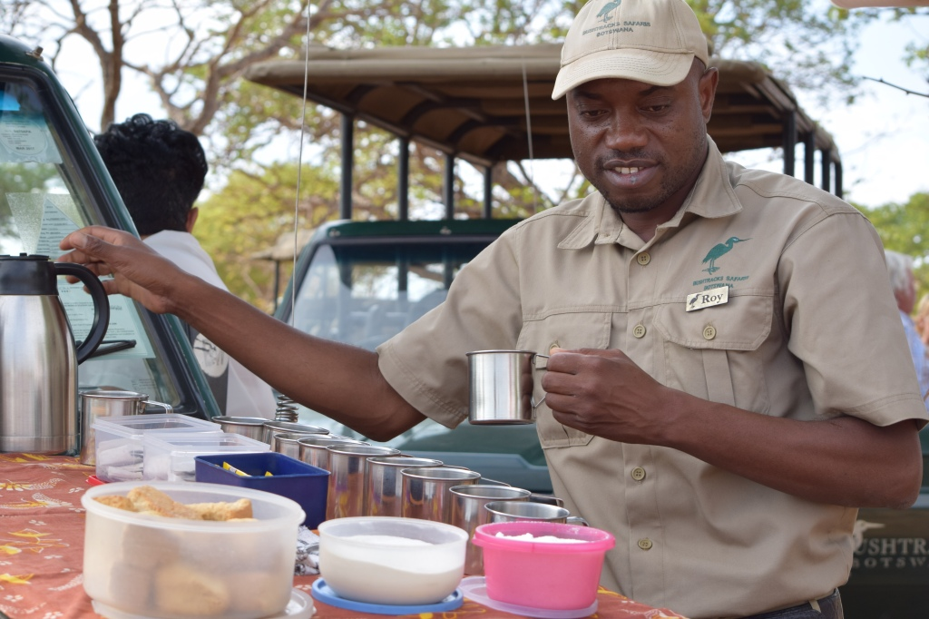 Safari Guide Serving a Bush Breakfast in Chobe National Park Botswana